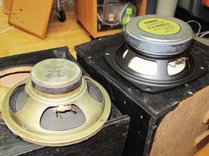 Speaker12